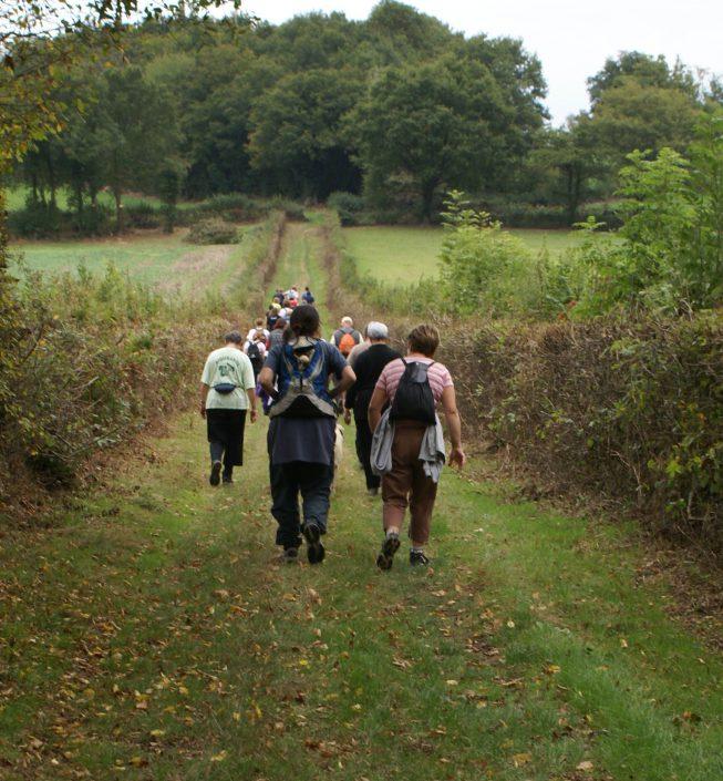 Wandelen rond de camping